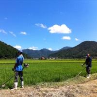 farm_5